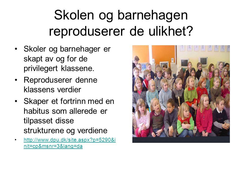 Skolen og barnehagen reproduserer de ulikhet