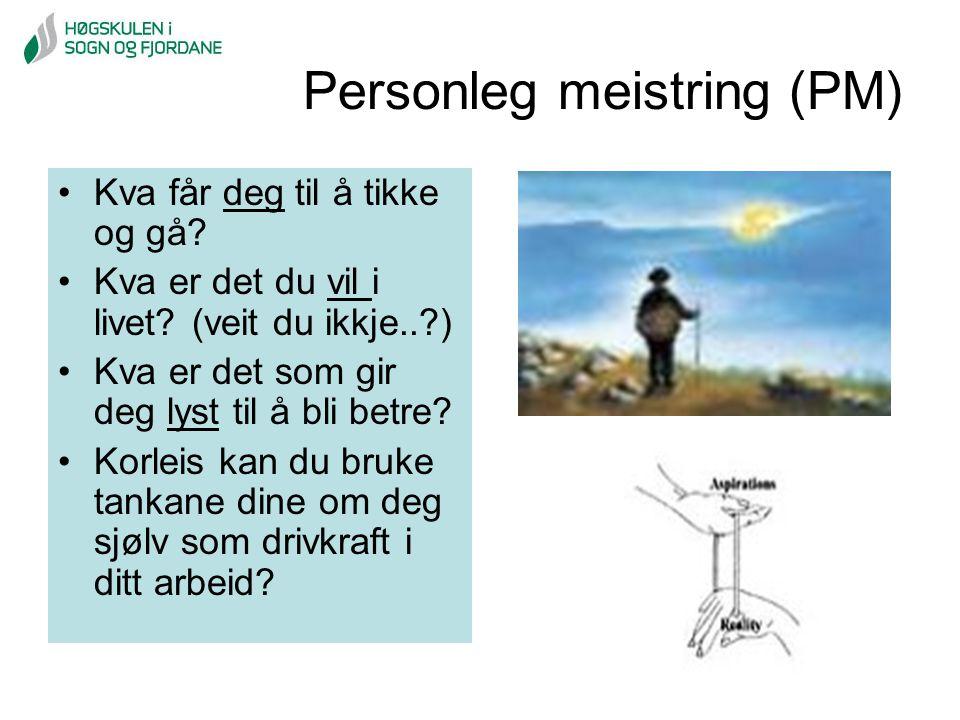 Personleg meistring (PM)