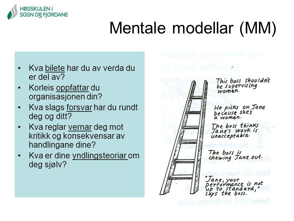 Mentale modellar (MM) Kva bilete har du av verda du er del av