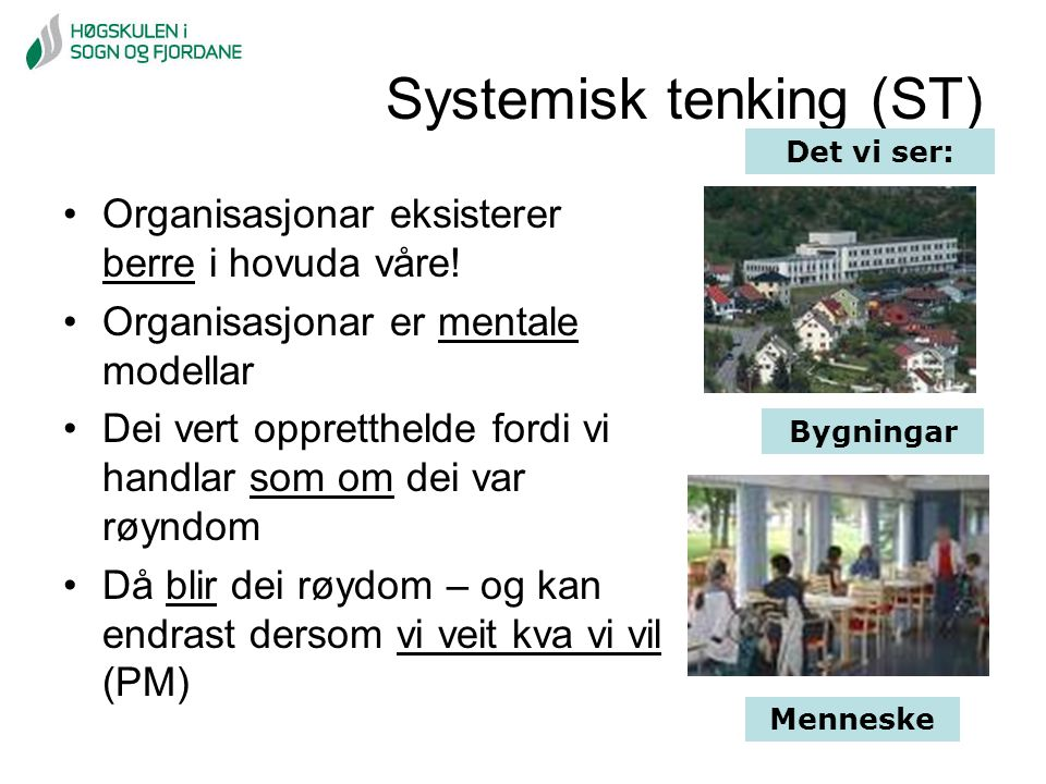 Systemisk tenking (ST)