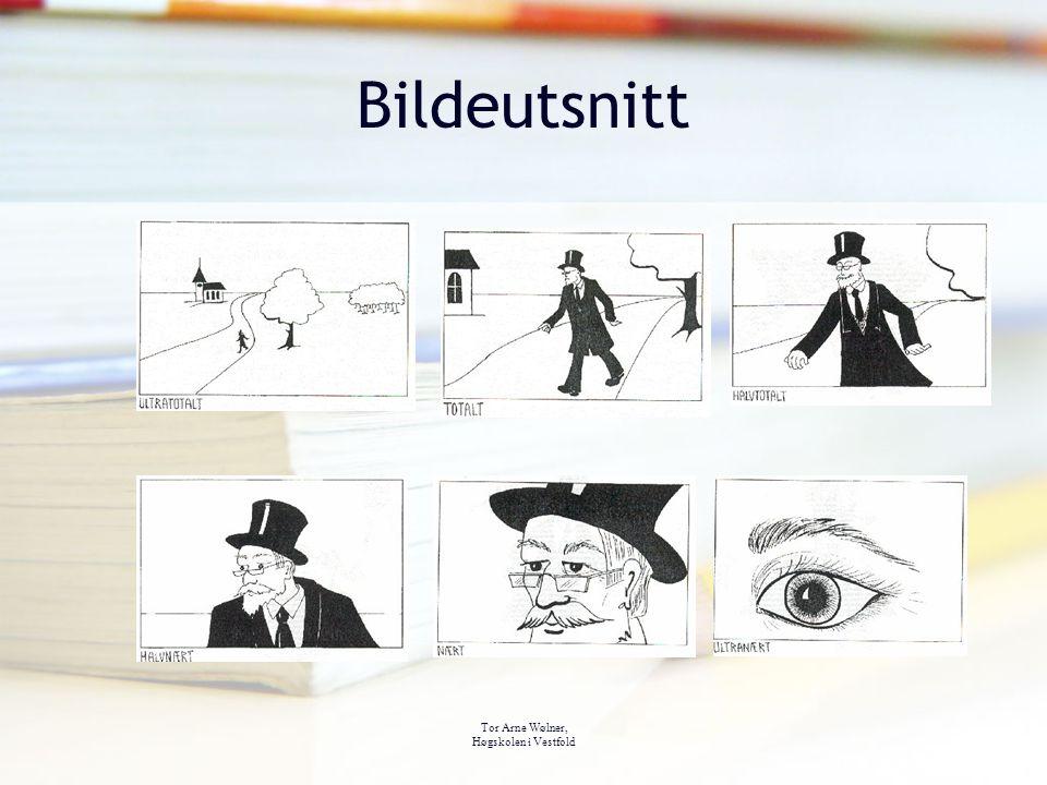 Bildeutsnitt Bildeutsnitt Tor Arne Wølner, Høgskolen i Vestfold