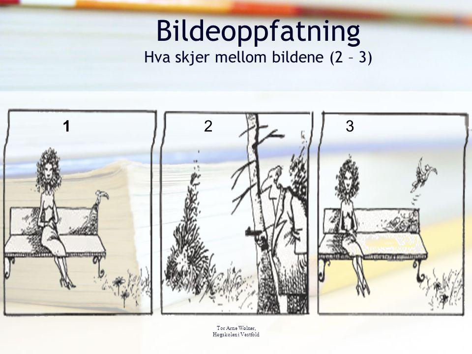 Bildeoppfatning Hva skjer mellom bildene (2 – 3)