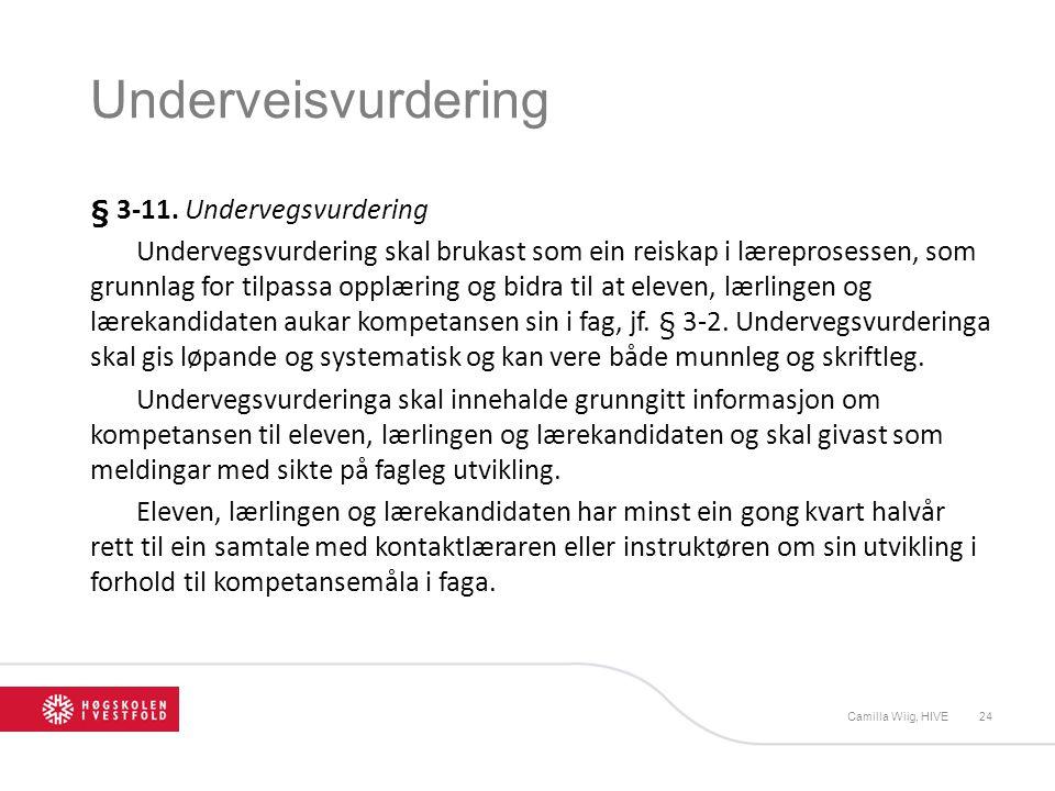 Underveisvurdering § 3-11. Undervegsvurdering