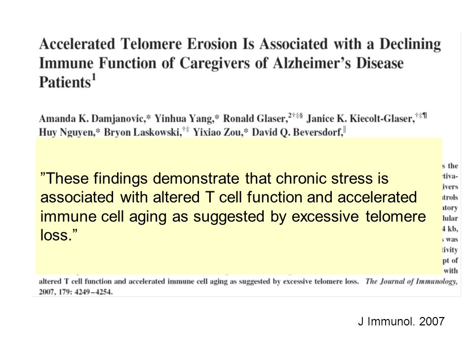 These findings demonstrate that chronic stress is associated with altered T cell function and accelerated immune cell aging as suggested by excessive telomere loss.
