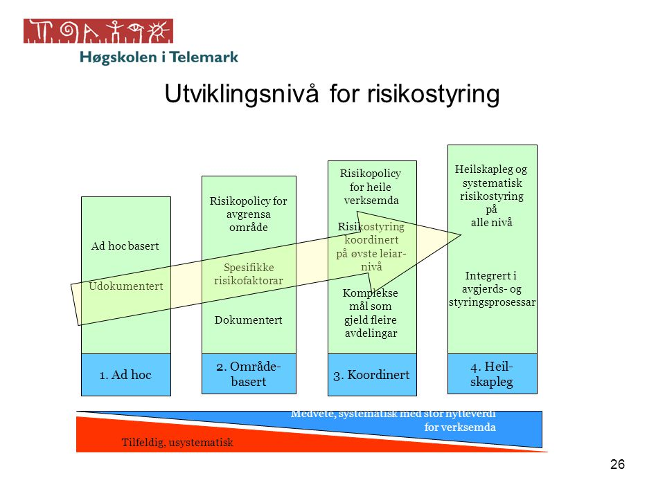Utviklingsnivå for risikostyring