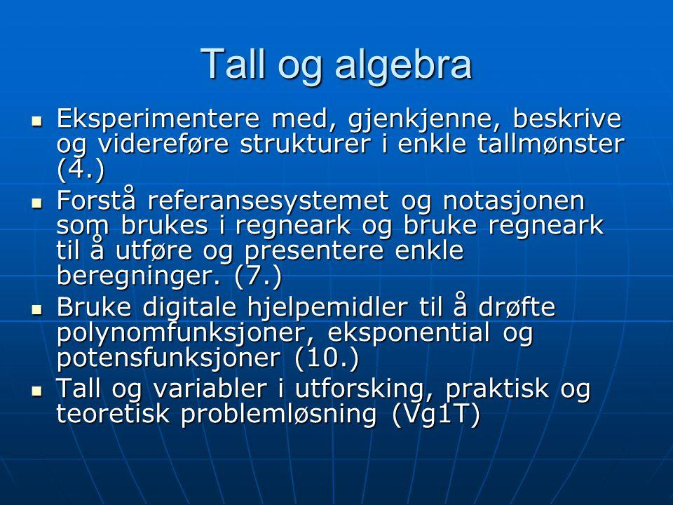 Tall og algebra Eksperimentere med, gjenkjenne, beskrive og videreføre strukturer i enkle tallmønster (4.)