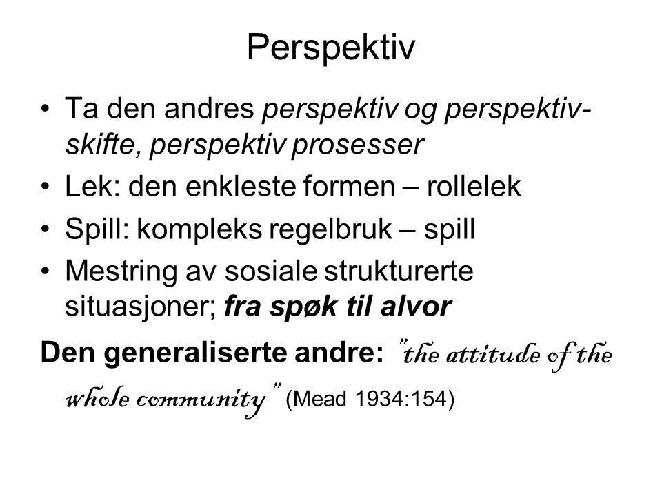 Perspektiv Ta den andres perspektiv og perspektiv-skifte, perspektiv prosesser. Lek: den enkleste formen – rollelek.