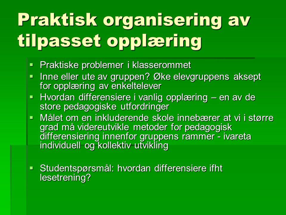 Praktisk organisering av tilpasset opplæring