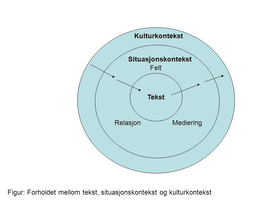 Kulturkontekst Situasjonskontekst. Felt. Tekst. Relasjon Mediering.