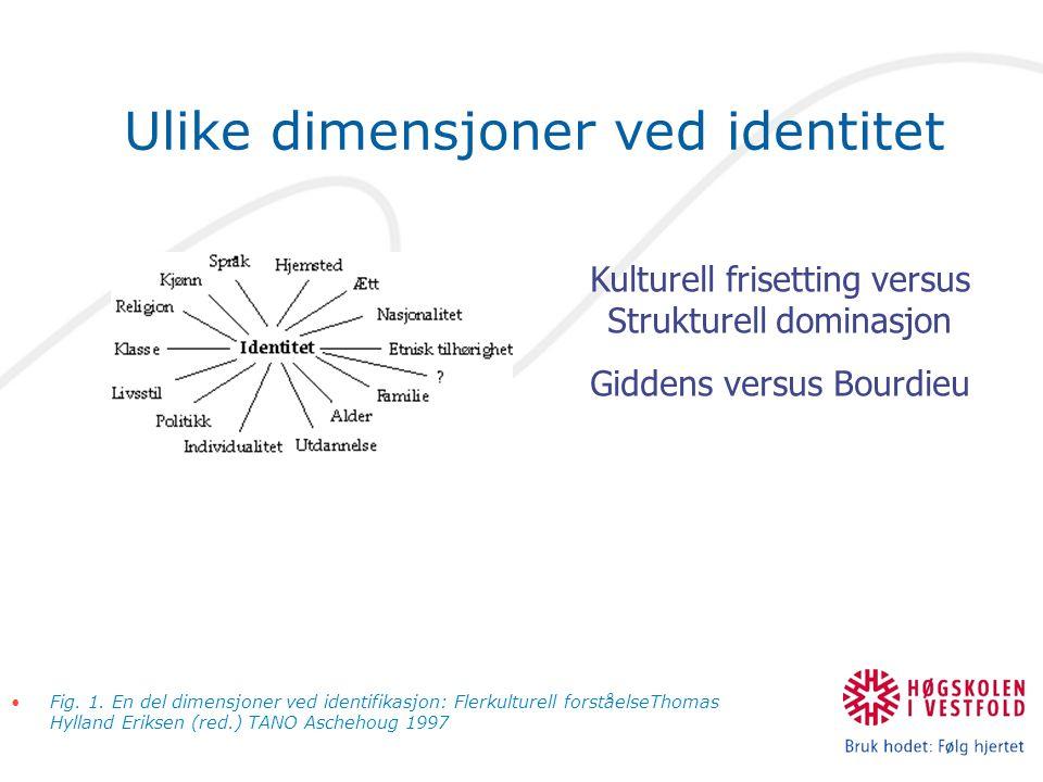 Ulike dimensjoner ved identitet