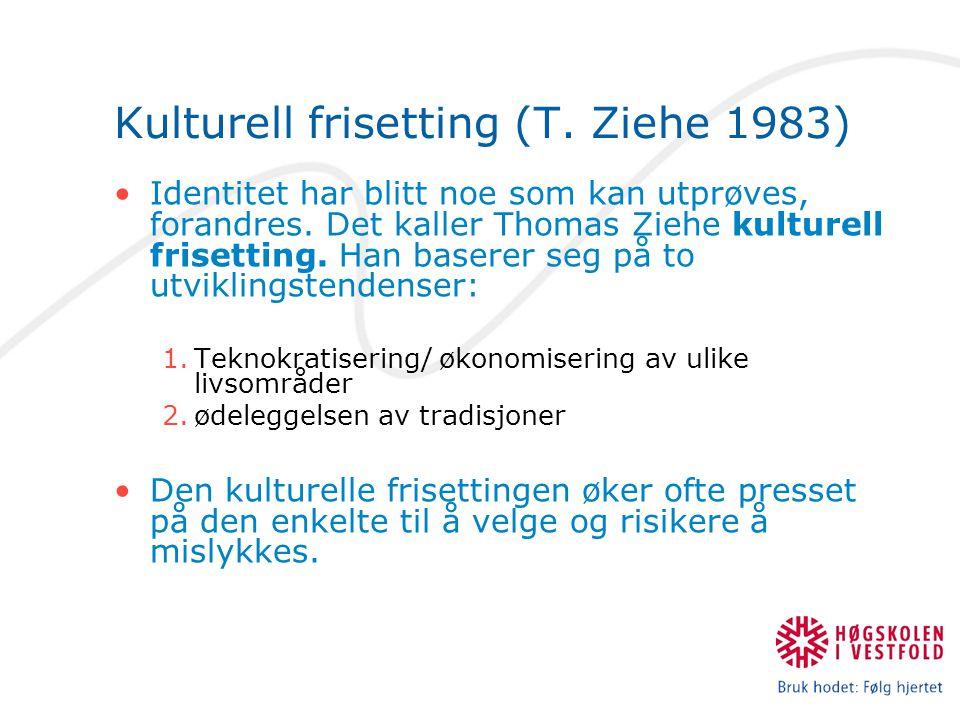 Kulturell frisetting (T. Ziehe 1983)