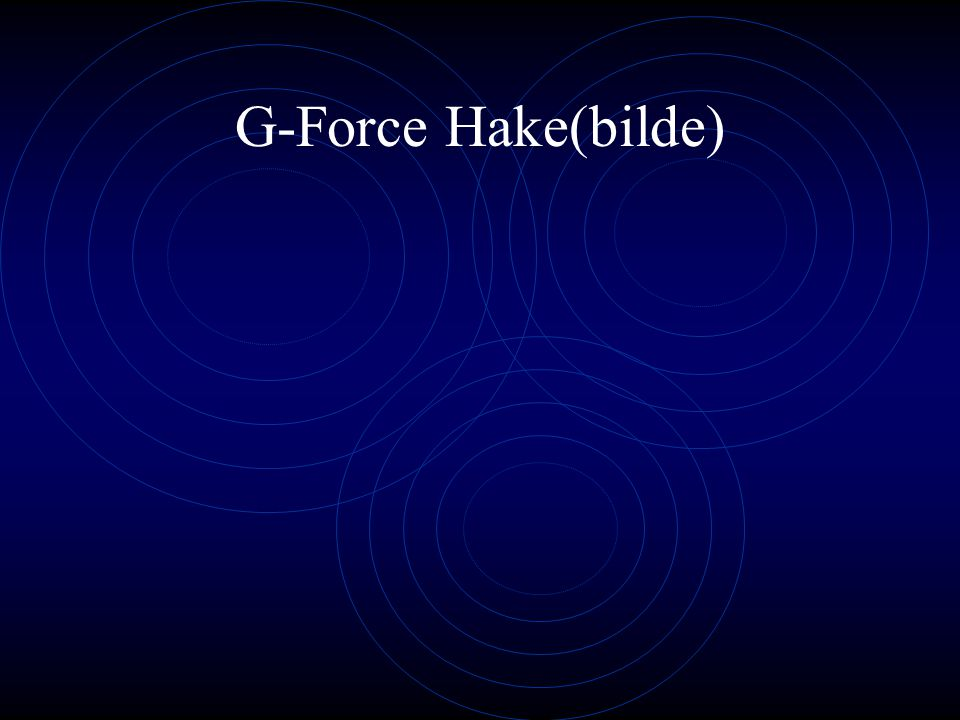 G-Force Hake(bilde)