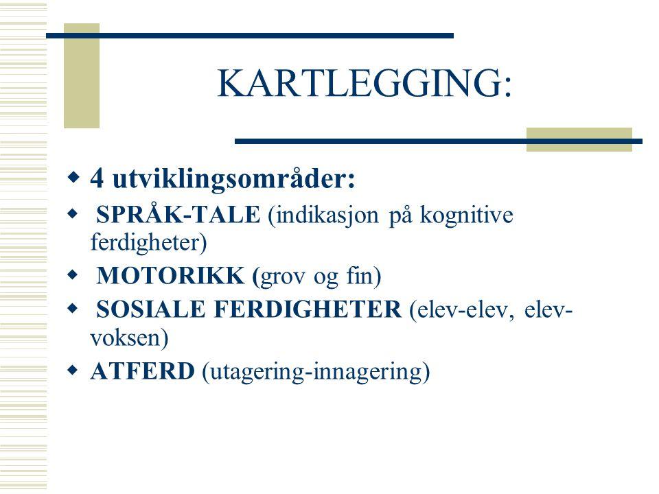 KARTLEGGING: 4 utviklingsområder: