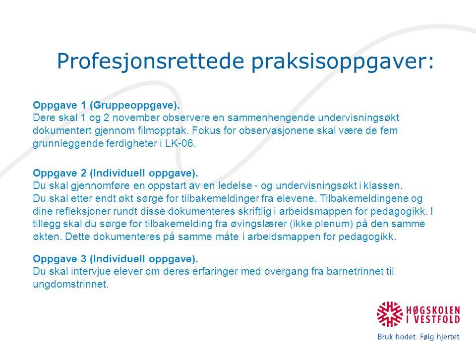 Profesjonsrettede praksisoppgaver: