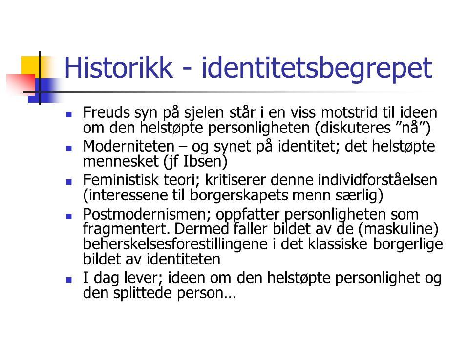 Historikk - identitetsbegrepet
