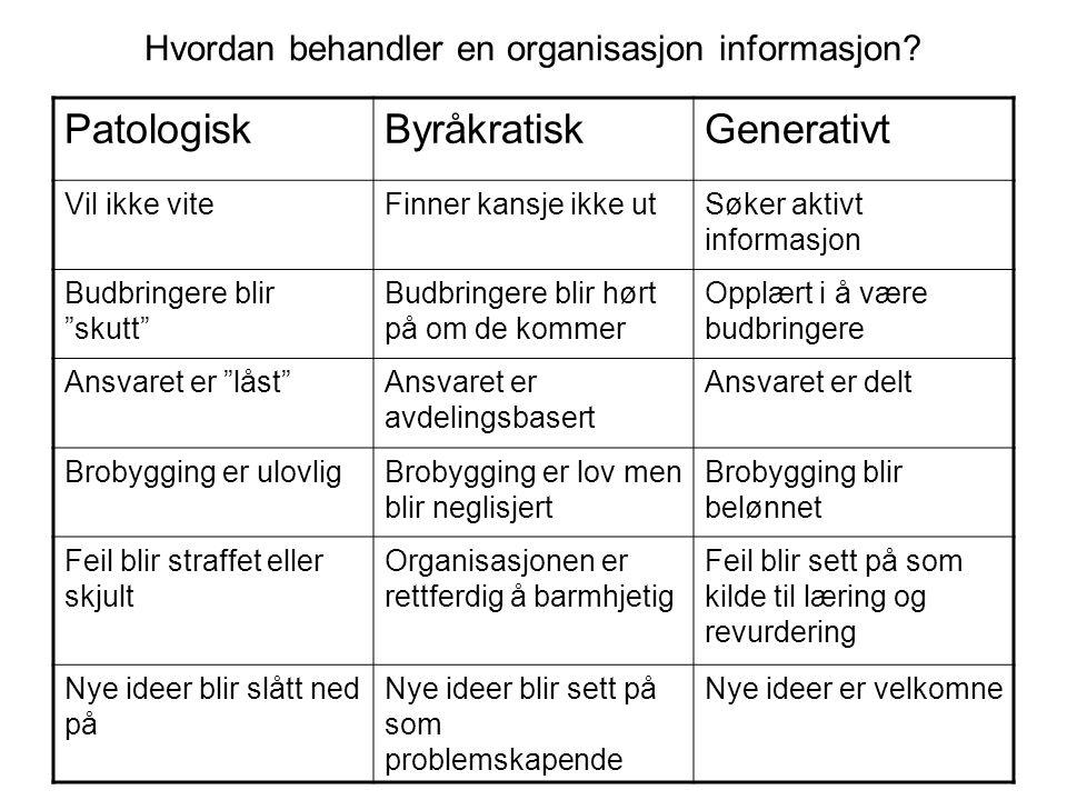 Hvordan behandler en organisasjon informasjon