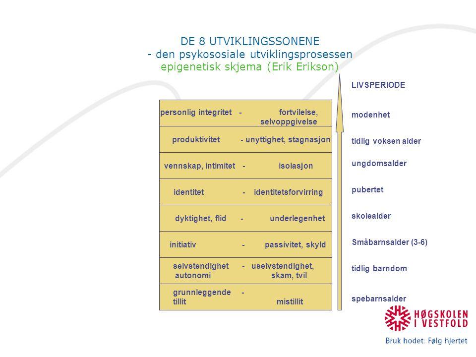 DE 8 UTVIKLINGSSONENE - den psykososiale utviklingsprosessen epigenetisk skjema (Erik Erikson)