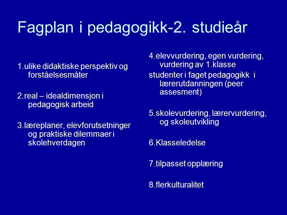 Fagplan i pedagogikk-2. studieår