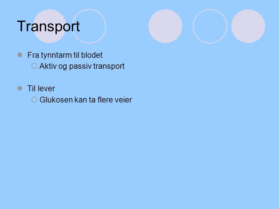 Transport Fra tynntarm til blodet Aktiv og passiv transport Til lever