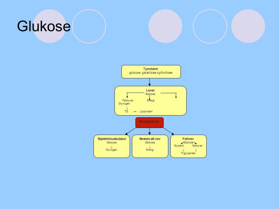 glukose, galaktose og fruktose