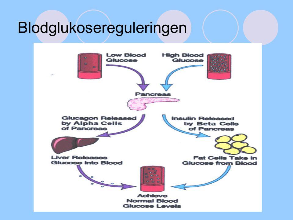 Blodglukosereguleringen