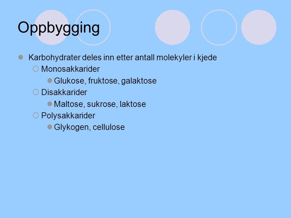 Oppbygging Karbohydrater deles inn etter antall molekyler i kjede