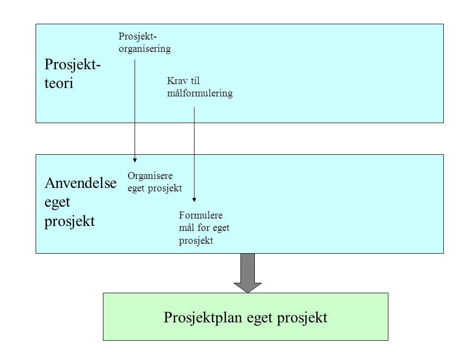 Prosjektplan eget prosjekt