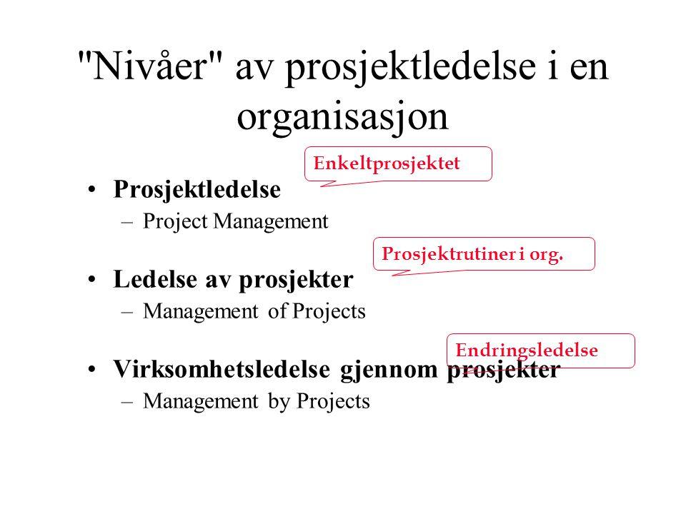 Nivåer av prosjektledelse i en organisasjon