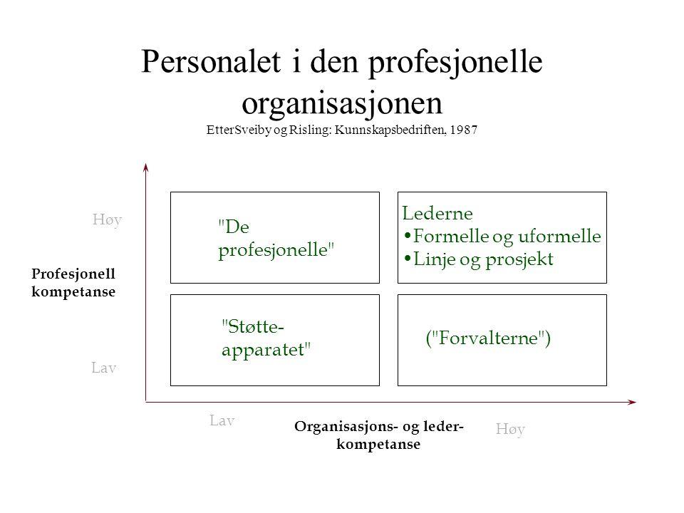 Organisasjons- og leder-