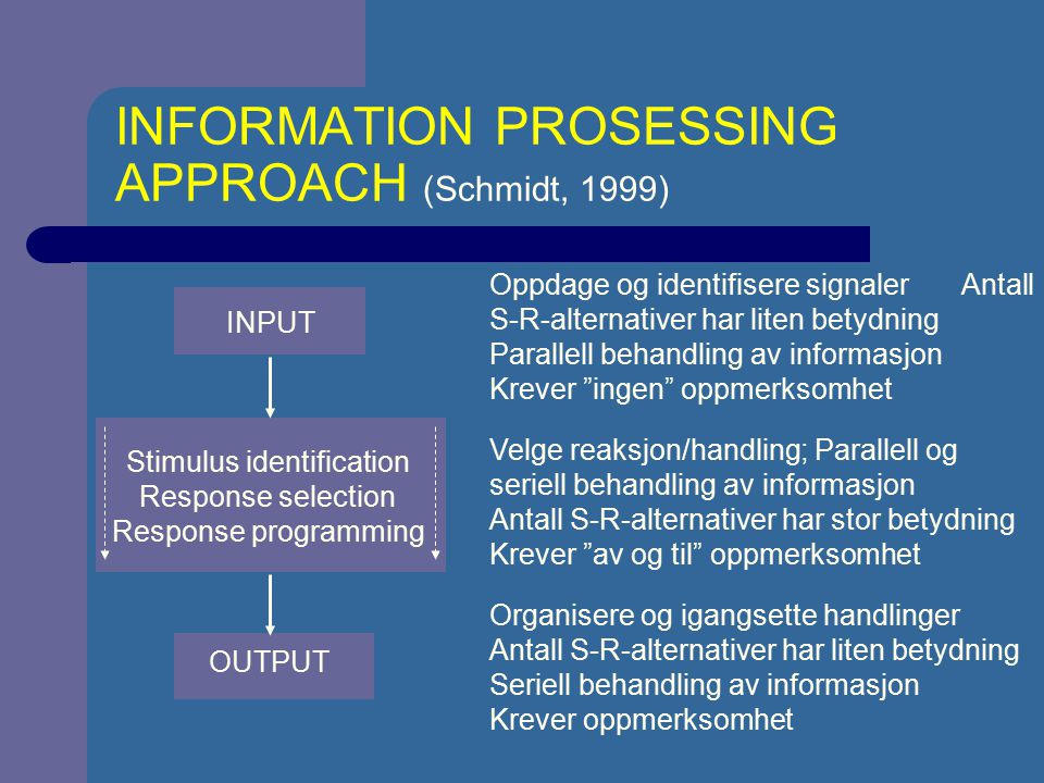 INFORMATION PROSESSING APPROACH (Schmidt, 1999)