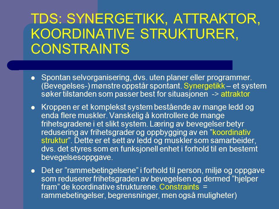 TDS: SYNERGETIKK, ATTRAKTOR, KOORDINATIVE STRUKTURER, CONSTRAINTS