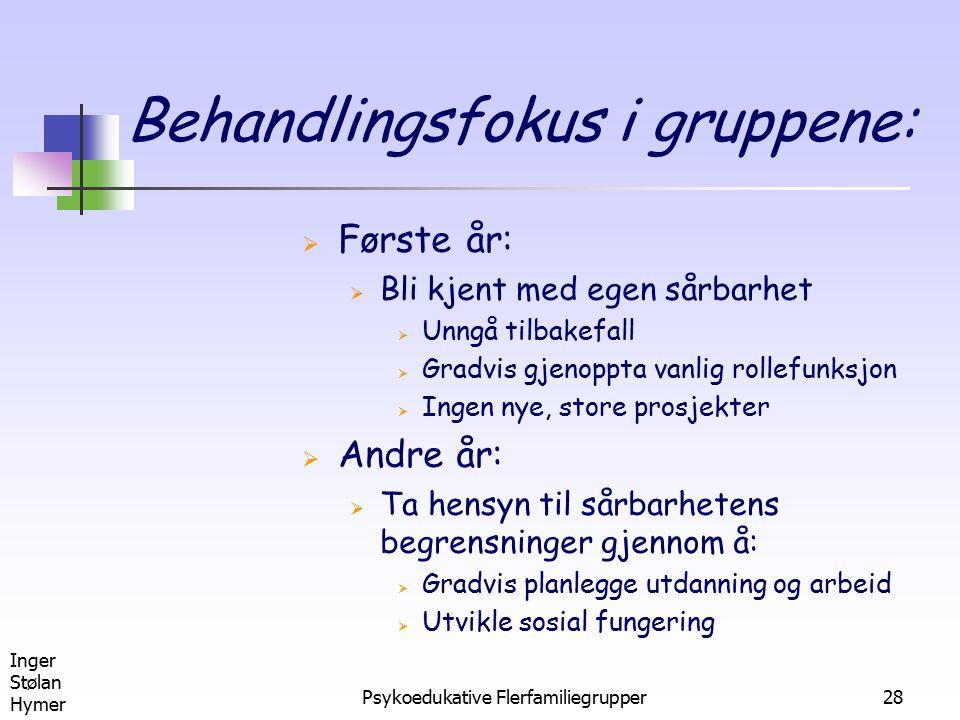 Behandlingsfokus i gruppene: