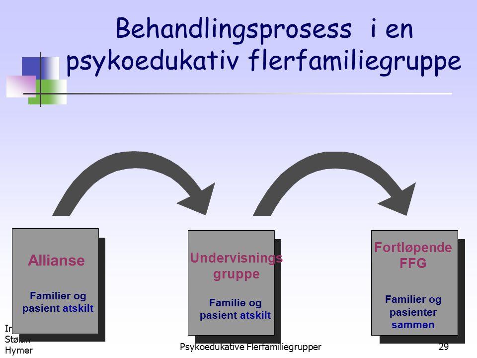 Behandlingsprosess i en psykoedukativ flerfamiliegruppe