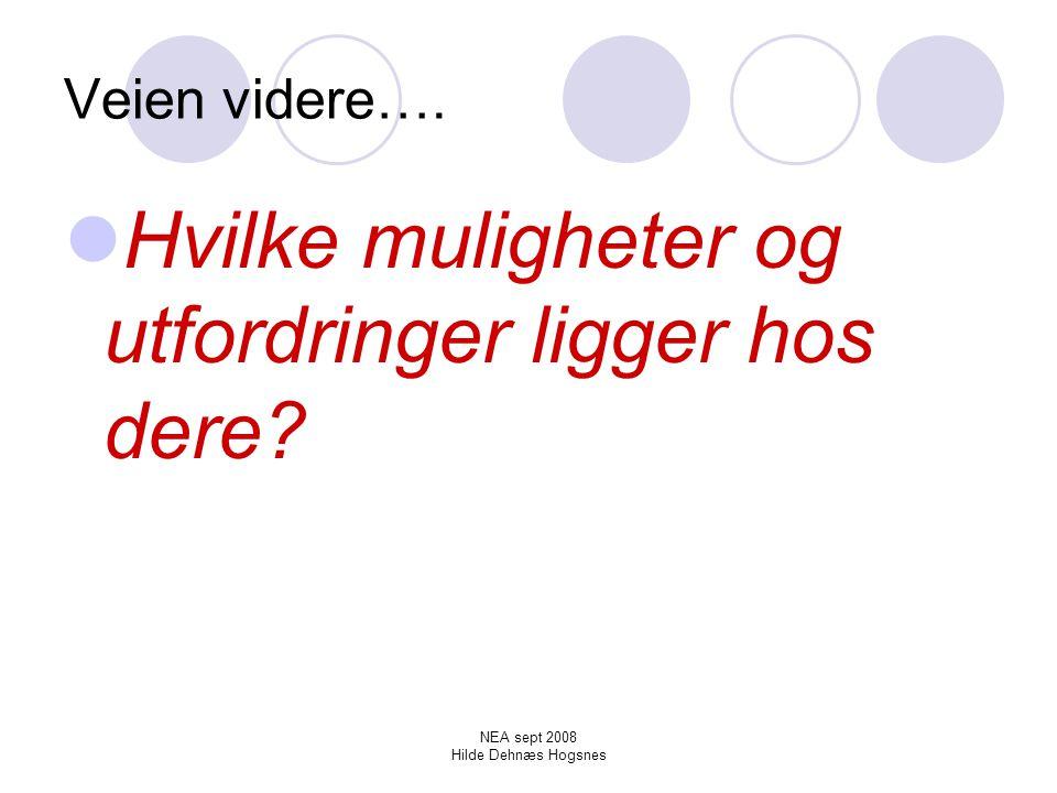 NEA sept 2008 Hilde Dehnæs Hogsnes