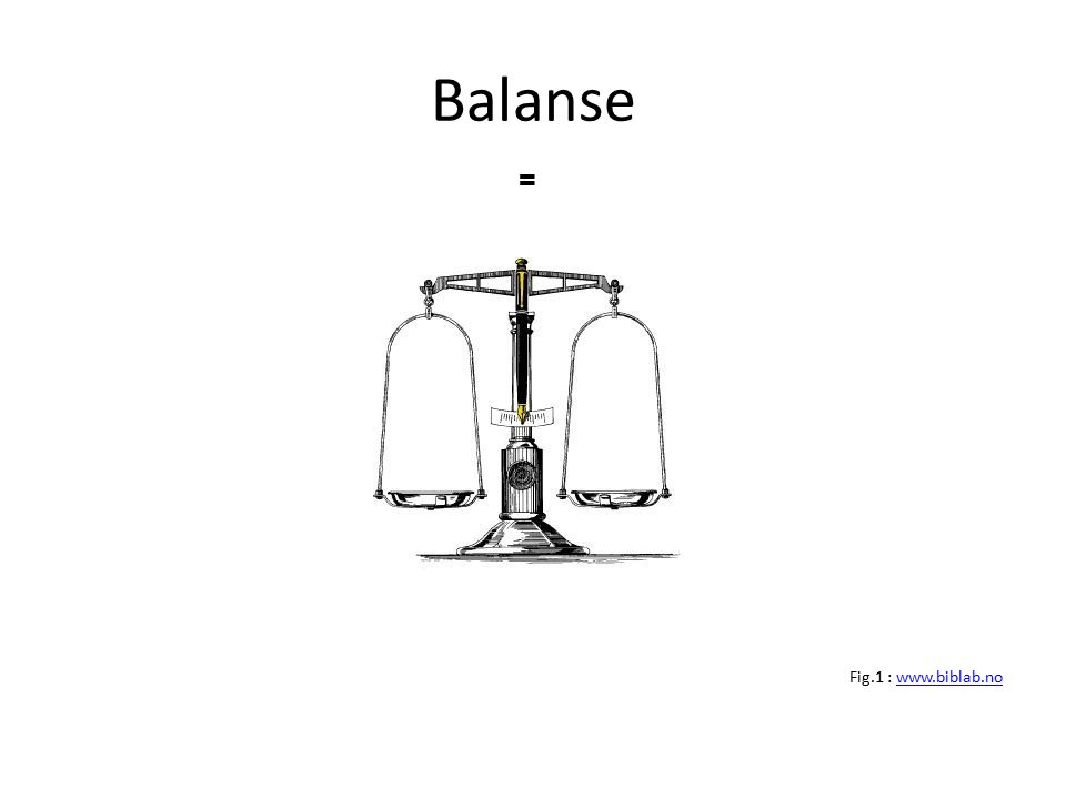 Balanse = Fig.1 : www.biblab.no