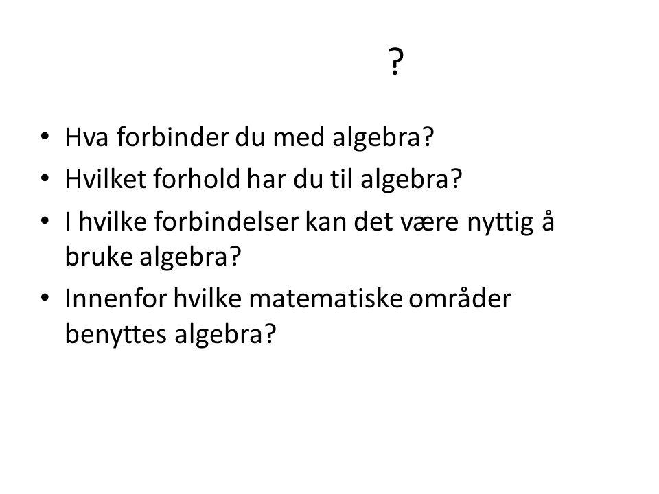 Hva forbinder du med algebra Hvilket forhold har du til algebra