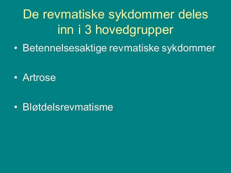 De revmatiske sykdommer deles inn i 3 hovedgrupper