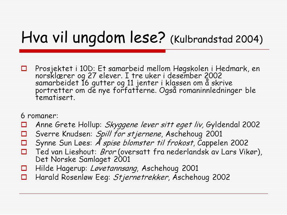 Hva vil ungdom lese (Kulbrandstad 2004)