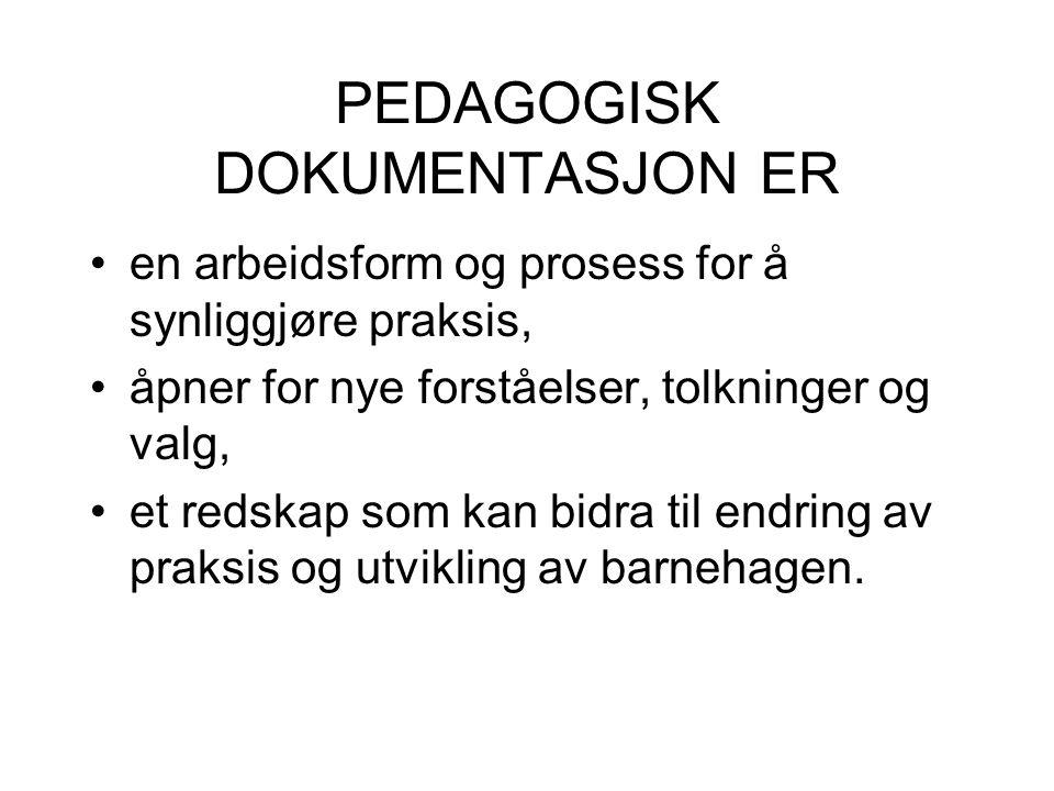 PEDAGOGISK DOKUMENTASJON ER