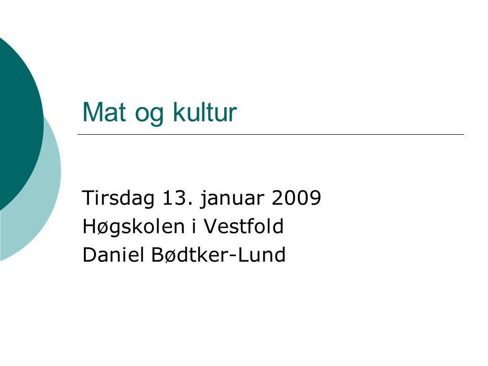 Tirsdag 13. januar 2009 Høgskolen i Vestfold Daniel Bødtker-Lund