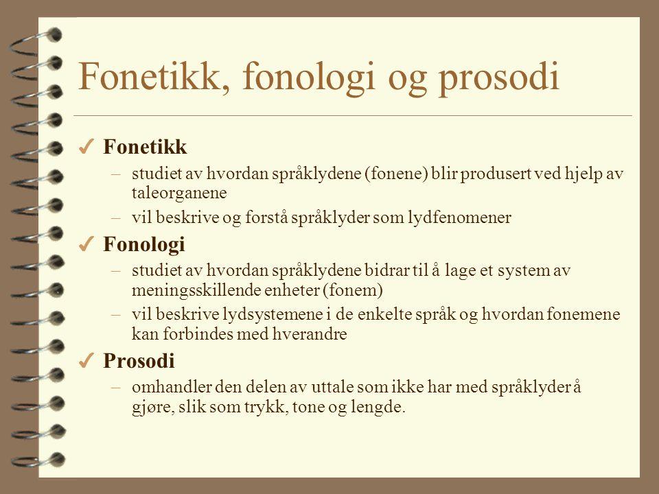 Fonetikk, fonologi og prosodi