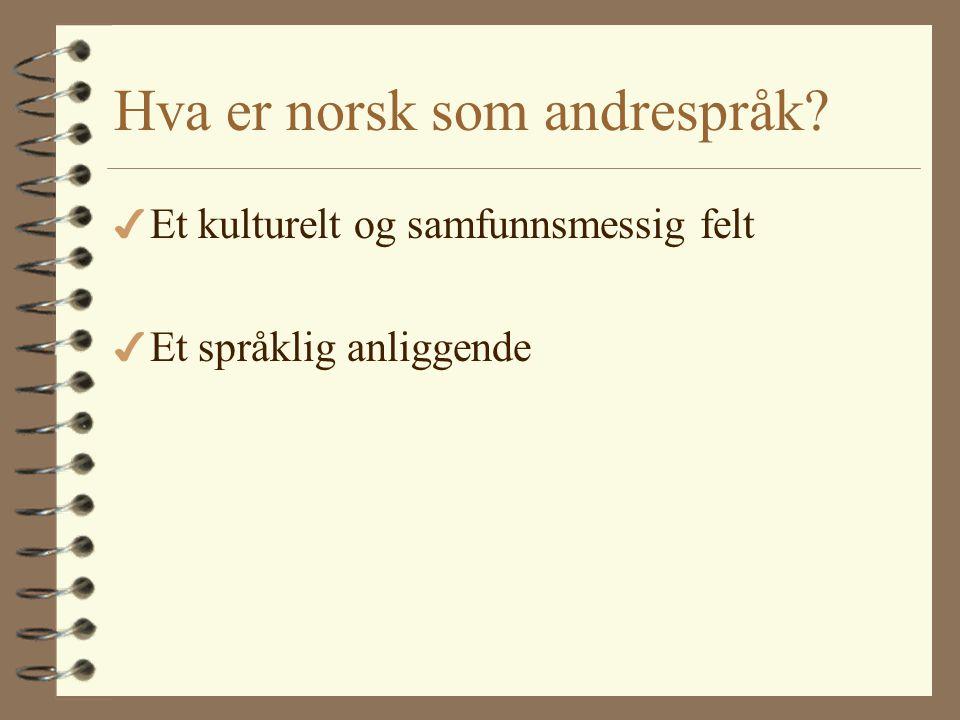 Hva er norsk som andrespråk