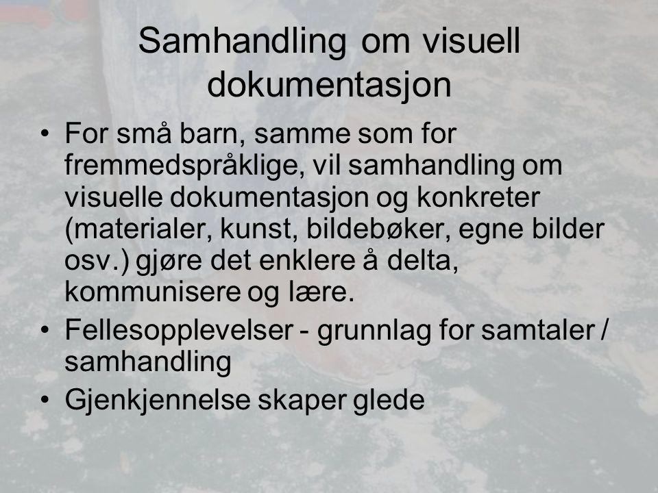 Samhandling om visuell dokumentasjon