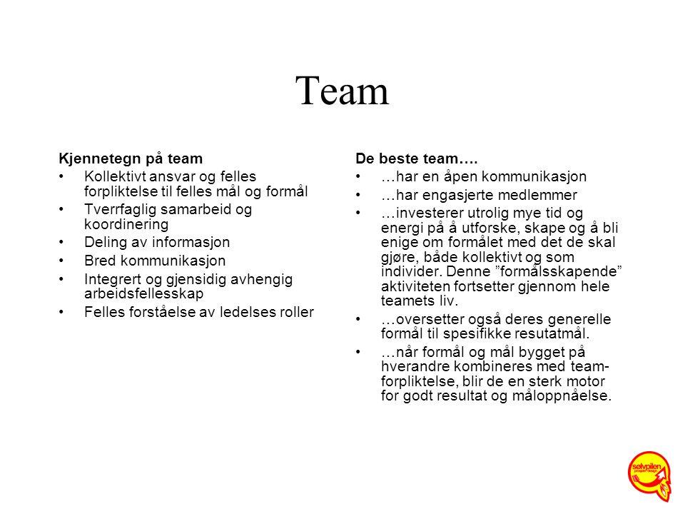 Team Kjennetegn på team