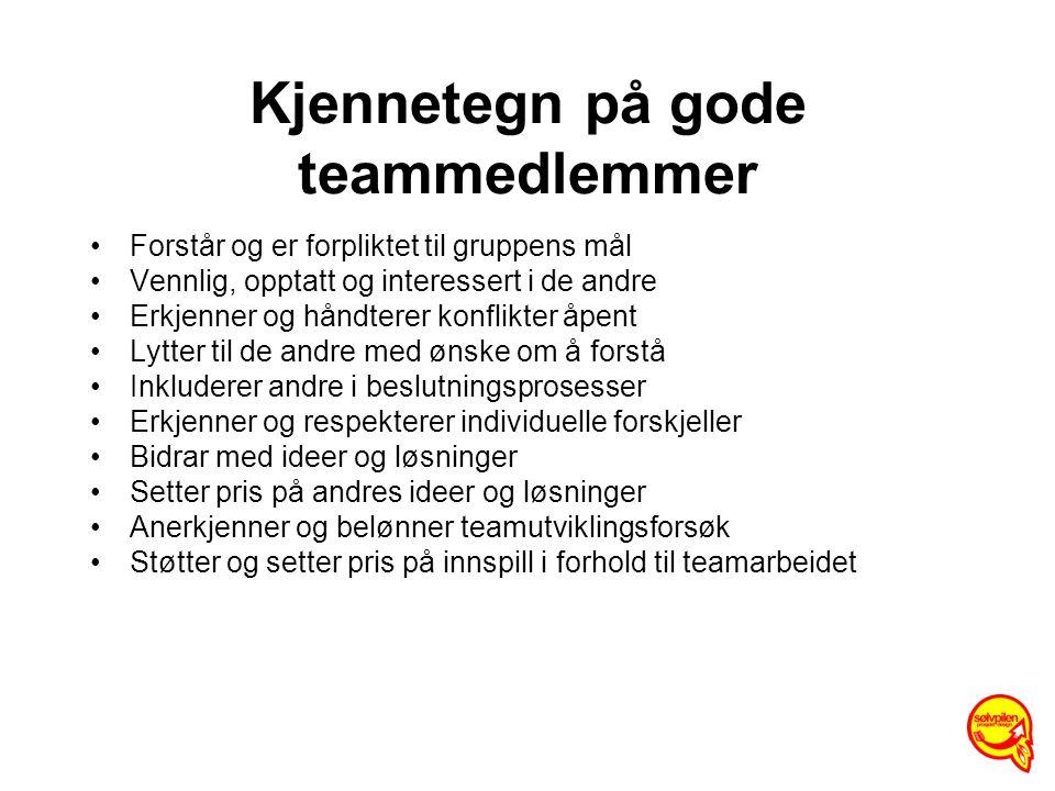 Kjennetegn på gode teammedlemmer