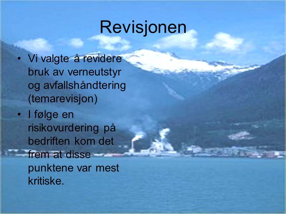 Revisjonen Vi valgte å revidere bruk av verneutstyr og avfallshåndtering (temarevisjon)