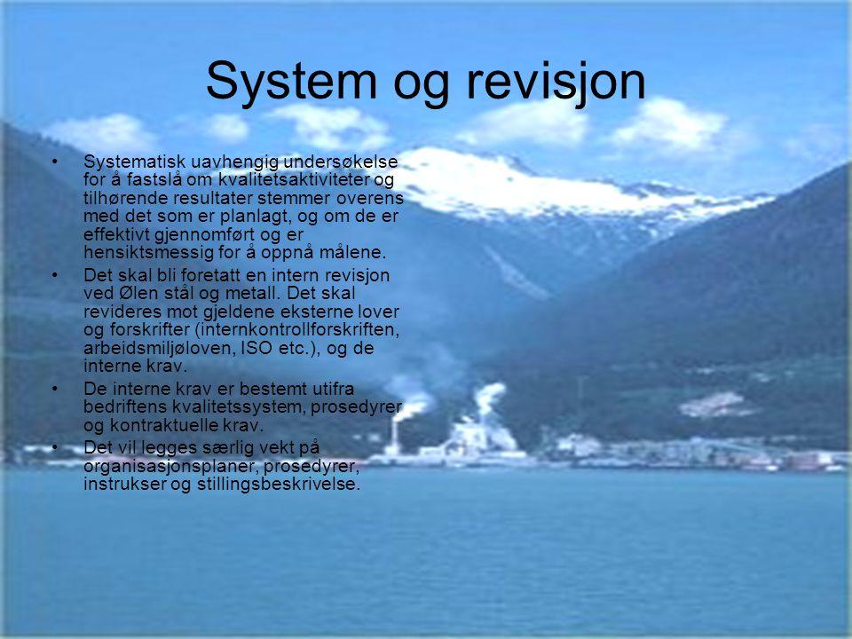 System og revisjon
