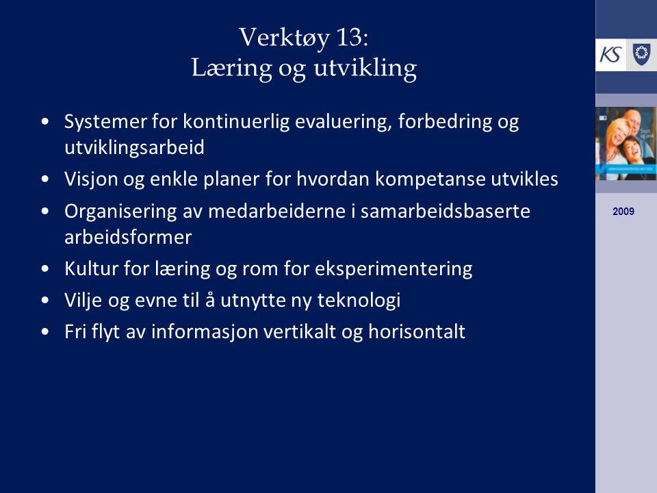 Verktøy 13: Læring og utvikling