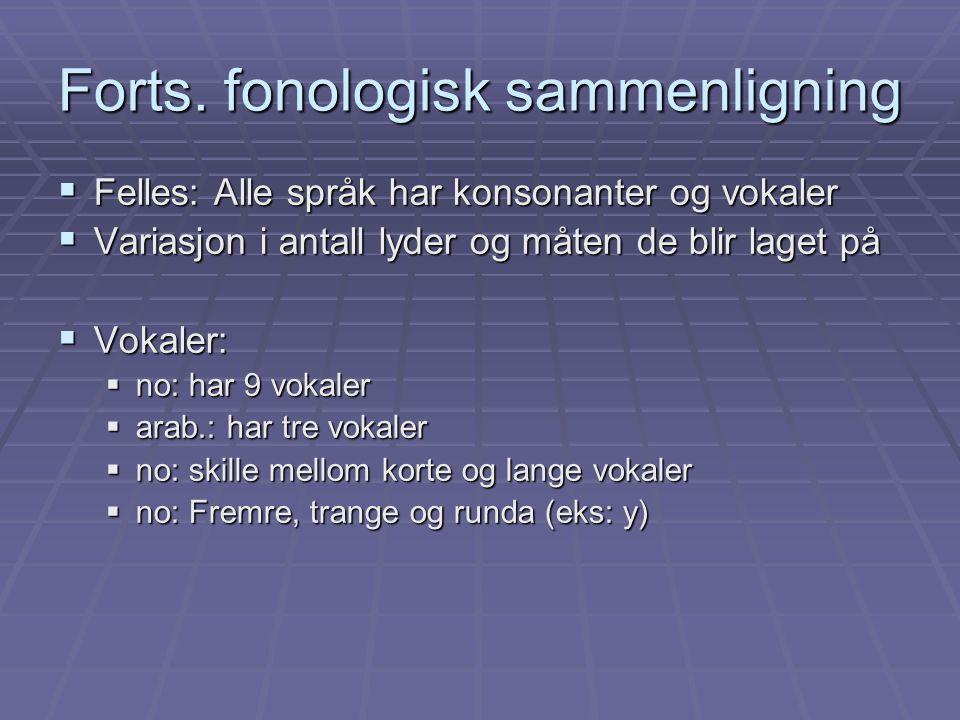Forts. fonologisk sammenligning