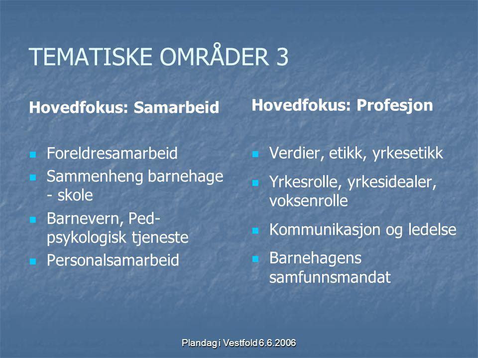 TEMATISKE OMRÅDER 3 Hovedfokus: Samarbeid Hovedfokus: Profesjon